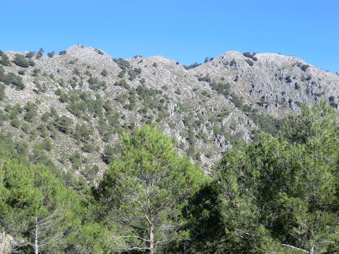 Foto de Subida a la Sierra de Rute